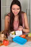 Souhaits de panier-repas photo libre de droits