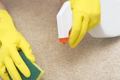 Souillure de nettoyage sur un tapis photo stock