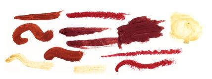 Souillures enduites de rouge à lievres Image stock