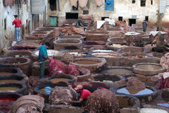 Souk дубильни, Марокко Стоковое Изображение