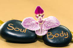 Soul and body lava stones Stock Photography
