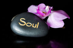Soul lava stone. And orchid flower Stock Photography