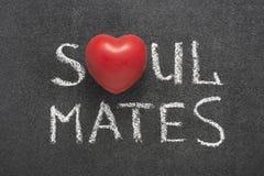 Soul mates heart Stock Image