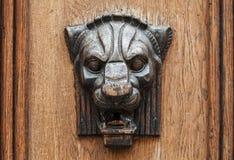 Soulagement en bois de tête de lion - élément décoratif Photo stock