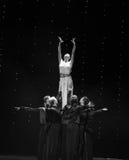 Soulevez la magie de déesse-Le de la danse du monde de l'Autriche de danse-le d'amour-flamant Photos libres de droits