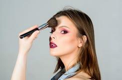 Soulignez la f?minit? Approvisionnements professionnels de maquillage Diff?rents balais Soin de peau Concept de cosm?tiques de ma photo libre de droits