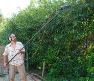 Sound Engineer Recording Bird Sound stock image