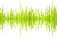 Sound waves 001. Frequency sound waves from nature stock images