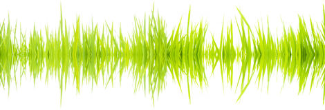 Sound waves 003. Frequency sound waves from nature Stock Photo