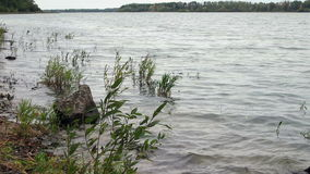 The Sound Of The Waves. On the Lake stock footage