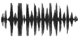 Sound waves recording speech, reverb, vector icon speech synthesizer, spectrogram acoustic waves Royalty Free Stock Image
