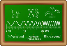 The sound waves vector diagram Stock Photo