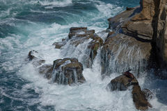 Sounds of Power--Water Rushes over the Rocks at La Jolla Royalty Free Stock Photos