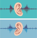 Soundwave through the human ear. Eps file vector Royalty Free Stock Images
