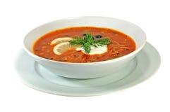 soup Royaltyfria Bilder