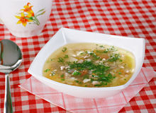 Soup. Vegetable soup with ball of meat and parsley Stock Images