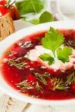 soup Arkivbilder