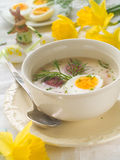 soup Royaltyfria Bilder