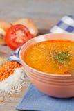 Soup Royaltyfri Foto