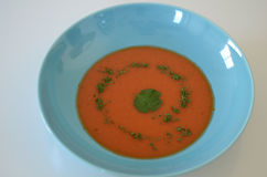 soup Royaltyfria Foton