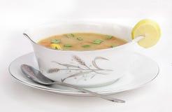 soup Arkivfoto
