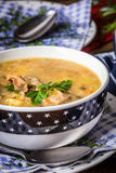 Soup with barley and chicken gizzards. Stock Image