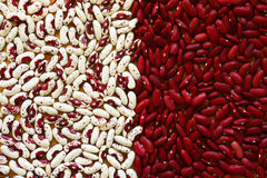 Soup Beans VI Royalty Free Stock Photography