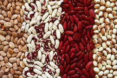 Soup Beans VI Royalty Free Stock Images