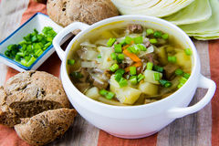 Soup with beef and cabbage Royalty Free Stock Photography