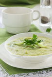 Soup of broccoli Royalty Free Stock Photo