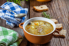 Soup with buck. Stock Image