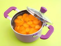 Soup of carrots Royalty Free Stock Photo