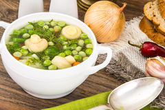 Soup with Cauliflower, Brussels Sprouts, Green Beans, Peas, Carr Stock Photos