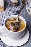 Soup with chicken giblets Royalty Free Stock Photography
