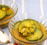 Soup of cucumbers Stock Images