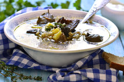 Soup from dried mushroom with vegetables and barley. Stock Photo