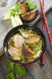 Soup with duck, leek and parsley. Royalty Free Stock Image