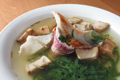 Soup with a fish royalty free stock photography