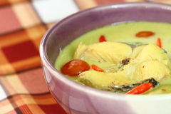 Soup with fish and coconut milk. Stock Images