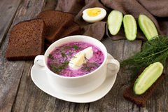 Soup with fresh beets served cold with  sour cream Royalty Free Stock Photos