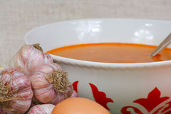 Soup and fresh garlic from kitchen garden. The soup, egg and fresh garlic from kitchen garden Stock Photos