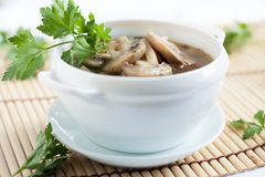 Soup with fresh mushrooms in a white tureen Royalty Free Stock Photography