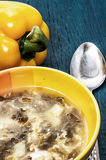 Soup with fresh vegetables Stock Images