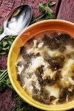 Soup with fresh vegetables Royalty Free Stock Photography