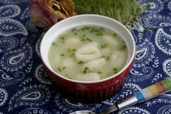Soup of vegetables with gnocchi. A soup of fresh vegetables with italian gnocchi of potatoes Stock Photos