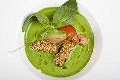 Soup From Spinach With Shrimps Royalty Free Stock Photos
