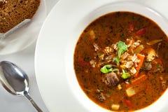 Soup Goulash Royalty Free Stock Photo