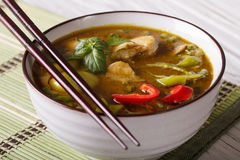 Soup green curry chicken close-up on the table. Horizontal Royalty Free Stock Photography