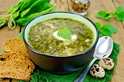 Soup green sorrel and nettles with a spoon Royalty Free Stock Photography