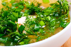 Soup with greenery Stock Photos